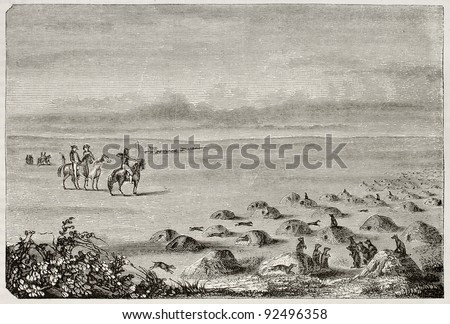 Prairie dogs town old illustration, New Mexico (rodents colonies with many close burrows). Created by Rouye, published on Magasin Pittoresque, Paris, 1845 - stock photo