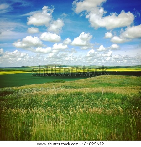 Prairie farm landscape in summer.  Prairie grass, hills and fields with white clouds and blue sky background. Bright yellow canola field in background. Instagram effects.