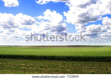 Prairie Landscape on a sunny summer day - stock photo