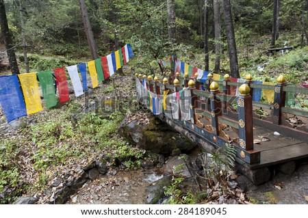 Prayer flags with a footbridge at Taktsang Monastery, Paro Valley, Paro District, Bhutan