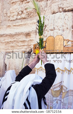 Prayer of Jew in western wall in Jerusalem on the holiday Of sukkot.