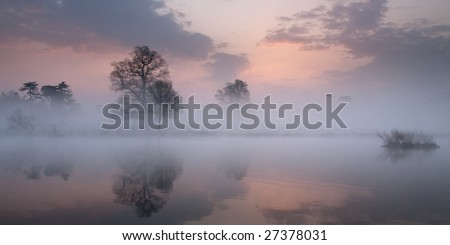 Pre dawn mist creating very subtle light - stock photo