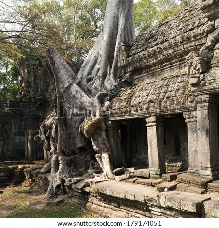 Preah Khan (Royal Sword) temple at Angkor, Cambodia