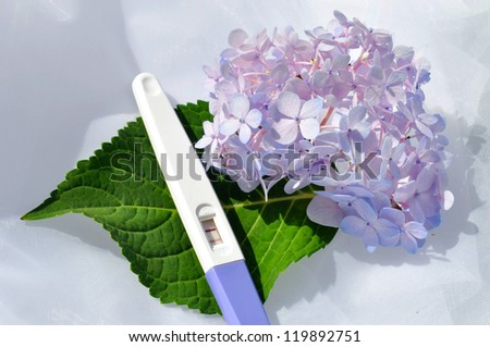 pregnancy test - stock photo