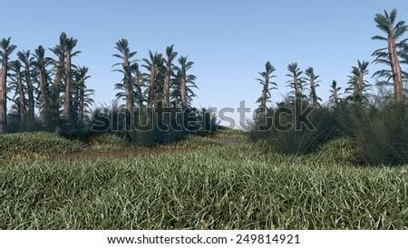 prehistoric landscape with mamenchisaurus dinosaur - stock photo