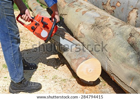 Preparation of fire wood - stock photo