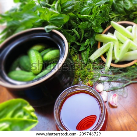 Preparation of pickled cucumbers - stock photo