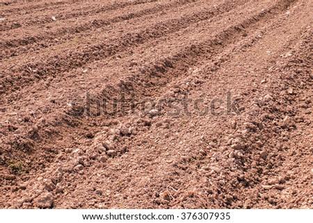Prepare the dry soil for plants - stock photo
