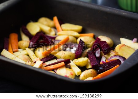 Prepared roots for baking dish, carrots, potatoes, beets, radish, parsnip - stock photo