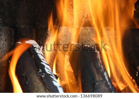 preparing barbecue with odorous trunks and flame - stock photo