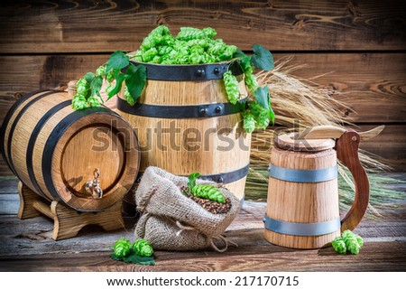Preparing for home beer brewing - stock photo