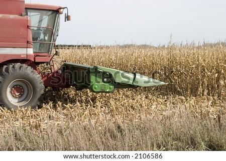 preparing to attack the corn for harvesting - stock photo
