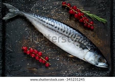 Preparing to bake mackerel with red currants and spices on an old scratched iron pan. Selective focus on fish - stock photo
