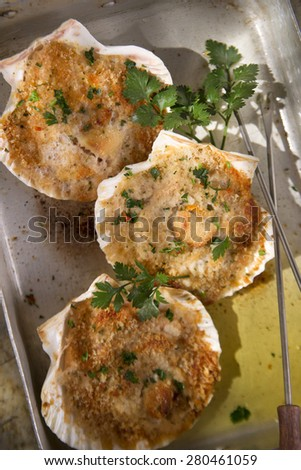 Presentation of scallops au gratin baked with parsley - stock photo