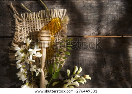 Presentation of small wooden spoon with acacia honey with its flower - stock photo