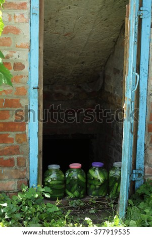 Preserved cucumbers in jars/ pickled homemade cucumbers in jars near the village cellar
