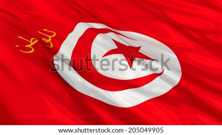 Presidential Standard Flag of Tunisia.