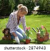 Pretty blond woman planting tulips in the garden. - stock photo