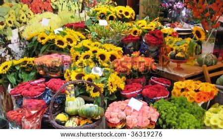 Pretty, colourful flower market in Amsterdam - stock photo