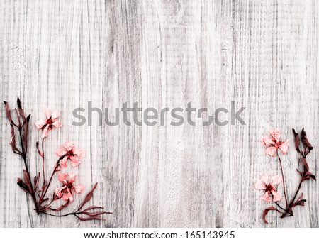 Pretty Dried Rock Rose Flowers on Rustic White Wood Background with room or space for text, copy, or words in the center area.  Horizontal with infrared treatment - stock photo