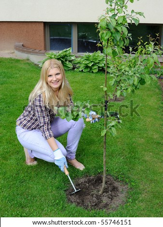 Pretty gardener woman with gardening tools outdoors planting apple tree - stock photo