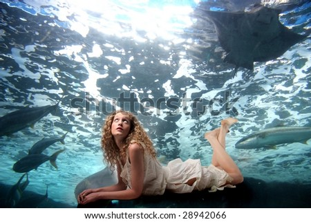 pretty girl looking fishes swimming - stock photo