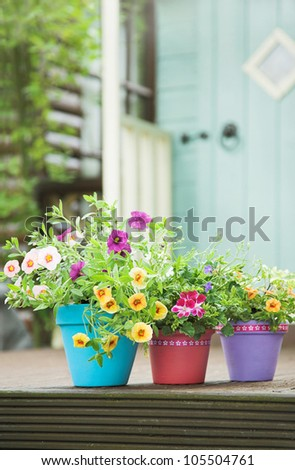 Pretty hand painted terracotta garden pots and summer flowers - stock photo