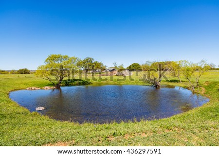 Pretty little pond on a ranch in the Texas Hill Country.