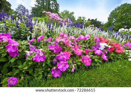 Flower garden Stock Photos, Flower garden Stock Photography ...