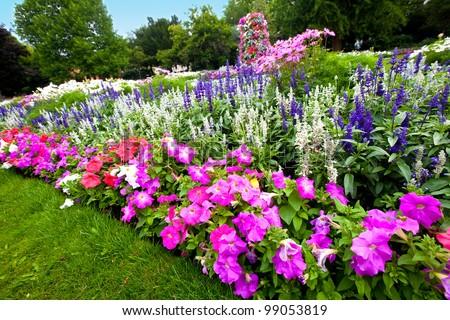 Pretty manicured flower garden with colorful azaleas. - stock photo