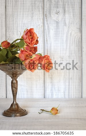 Pretty Peach Pink Roses Laying on a Tall Silver Candy Dish, a still life with room or space for copy, text. - stock photo