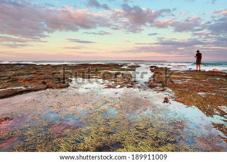 Pretty pinks cast a soft hue over the coastal landscape at  sunset, Plantation Point, Vimcentia  NSW Australia.  Rockpool with seaweed in foreground - stock photo