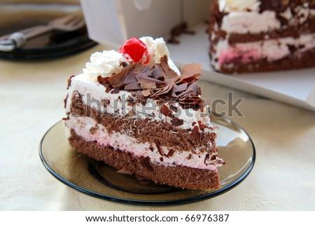 Pretty tasty chocolate cake on a  plate - stock photo