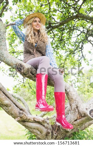 Pretty woman sitting in a tree in the garden on a sunny day - stock photo