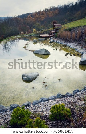 Pond Nature Stock Images Royalty Free Images Vectors Shutterstock