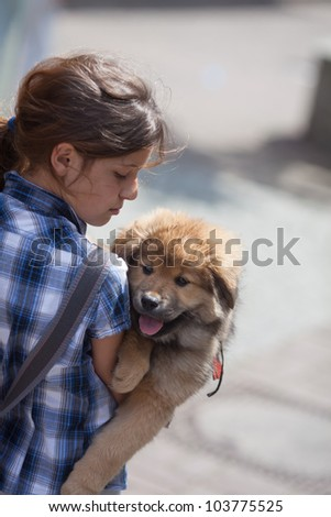 pretty young girl holds a cute Elo puppy in her arm - stock photo