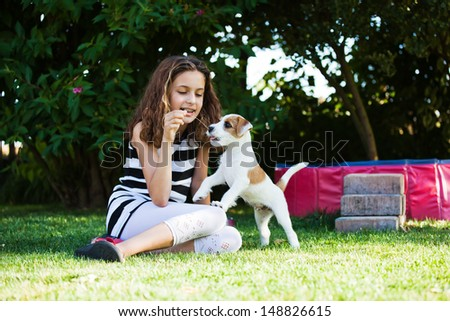 pretty young girl plays with a cute Parson Russell Terrier puppy in the garden - stock photo