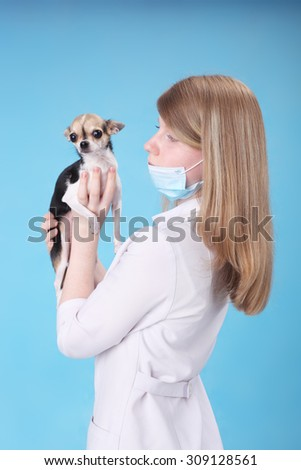 pretty young veterinarian with the little dog - stock photo