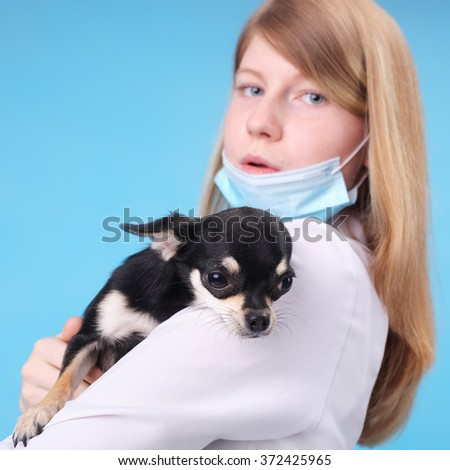 pretty young veterinarian with the little dog, focus on the dog - stock photo