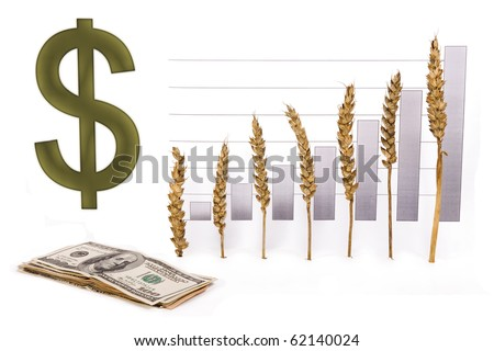 price growth grain - stock photo