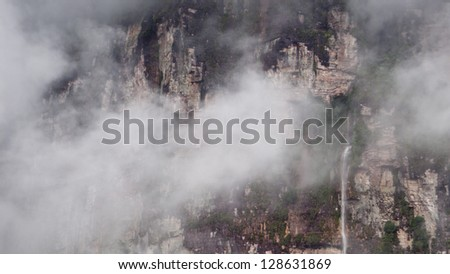 Primary rainforest viewed from the air in Venezuela - stock photo