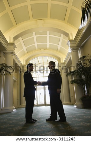Prime adult Asian and Caucasian businessmen shaking hands. - stock photo