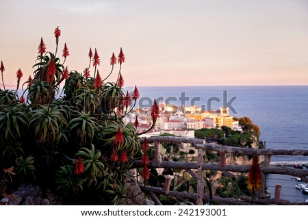 Prince's Palace in Monaco, view from the exotic gardens, daytime. Focus on the plant - stock photo