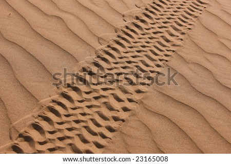 Prints of a car in the namibian desert, Africa - stock photo