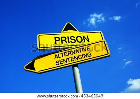 Alternate sentencing options
