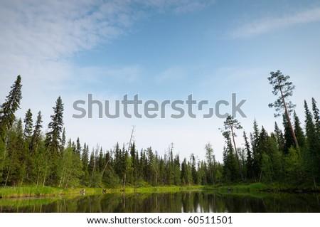 pristine nature of the Russian North. Lake in the taiga - stock photo