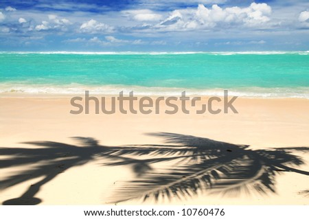 Pristine tropical beach with palm trees shadows on Caribbean island. Colors are natural. - stock photo