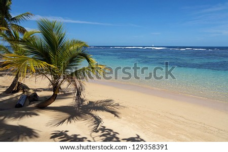 Pristine tropical beach with small coconut trees and clear water of its lagoon, Caribbean sea - stock photo