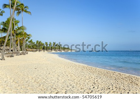 pristine tropical sand beach with palm trees - stock photo