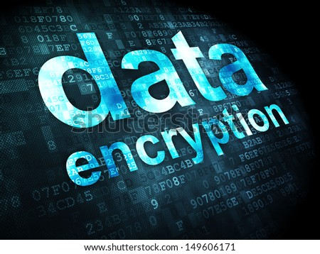Privacy concept: pixelated words Data Encryption on digital background, 3d render